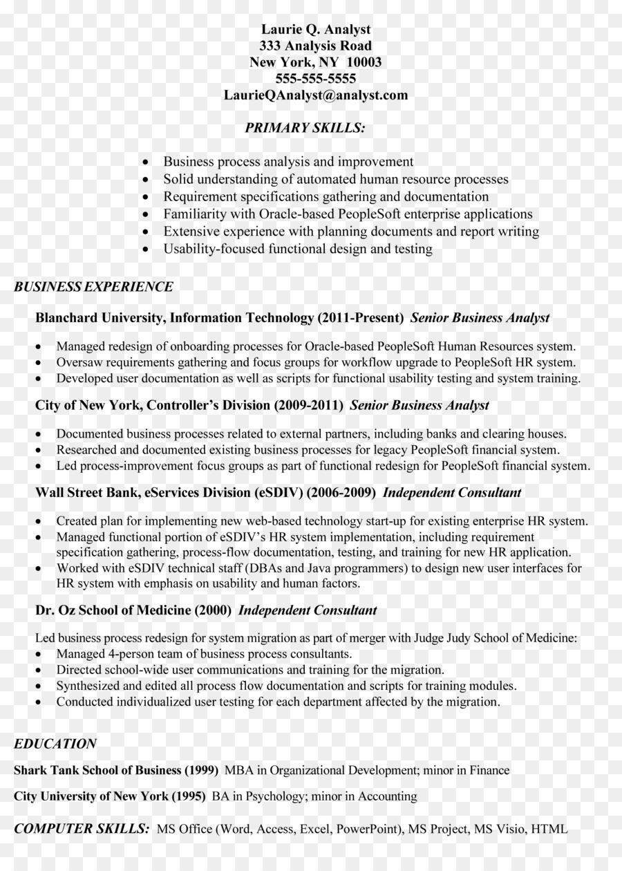 Résumé Job Description Cover Letter Template   Information Technology Audit