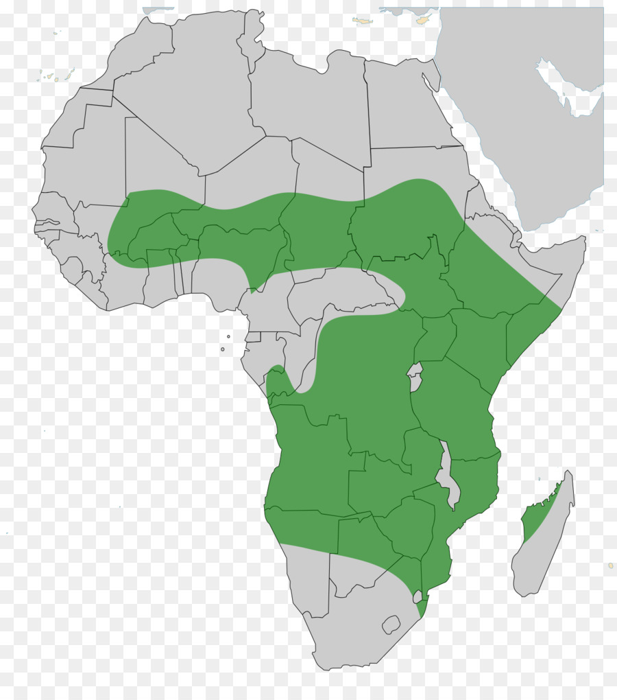 media coverage of the african continent History of africa through western eyes from the dark continent to the emerging one, crude generalisations say more about the viewer than the viewed robert bates for think africa press , part of.