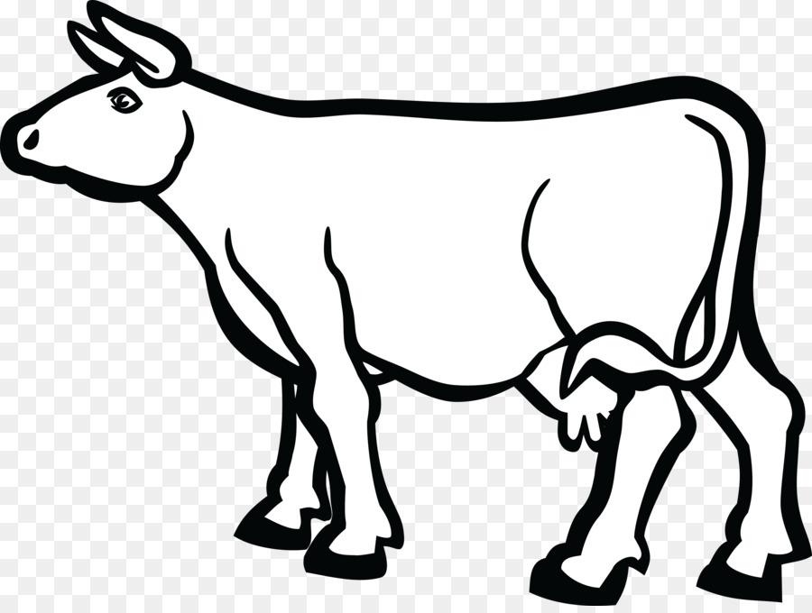 University Of Kansas Baka Holstein Friesian Cattle Calf Dairy Cattle