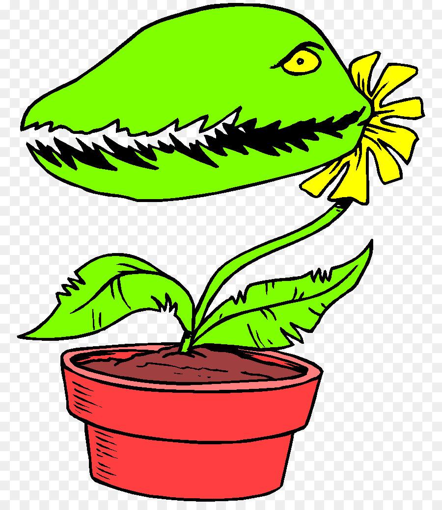 Venus flytrap Animated film Carnivorous plant Clip art - plant png ...