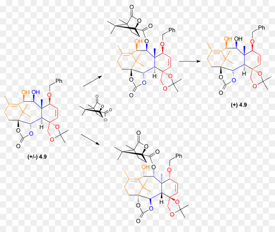 holton taxol semisynthesis Abstract the work within this thesis is positioned in the field of natural product (np) chemistry and covers three main integrated studies along with some additional explorations.