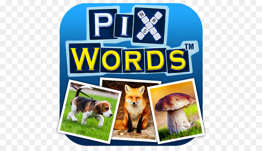 Pixwords Pixwords Scenes Picture Crosswords Android Letter Android