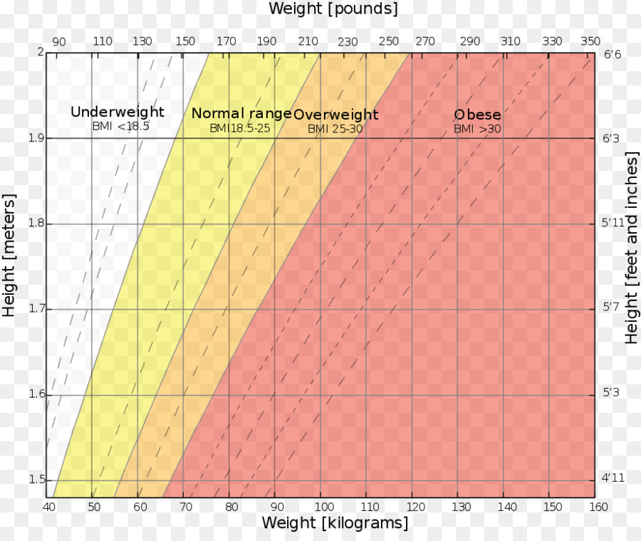 Weight And Height Percentile Body Mass Index Growth Chart Human