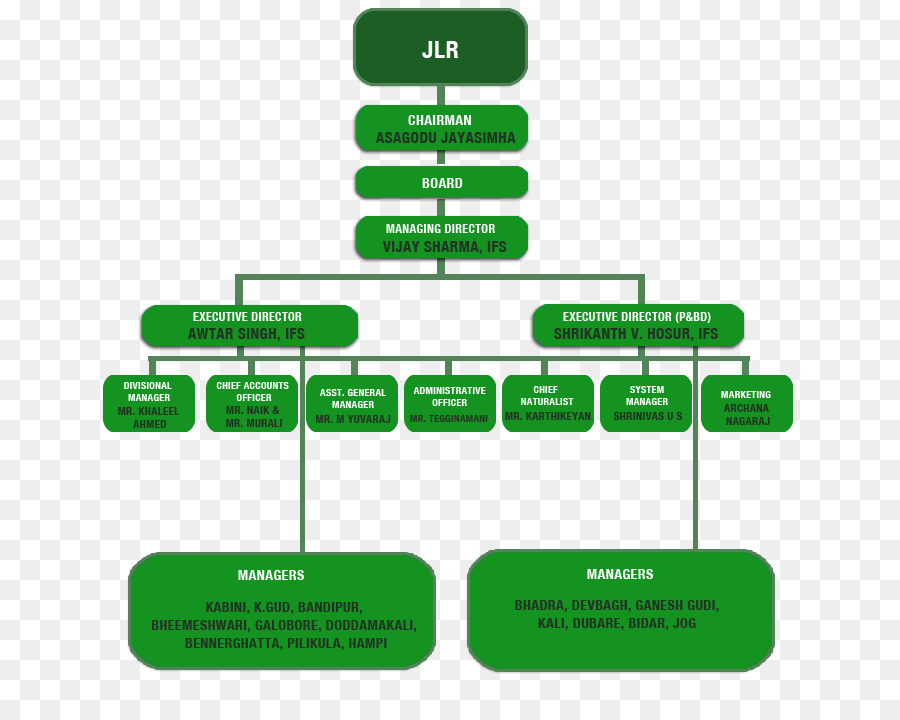 hierarchical organization india organizational structure business india