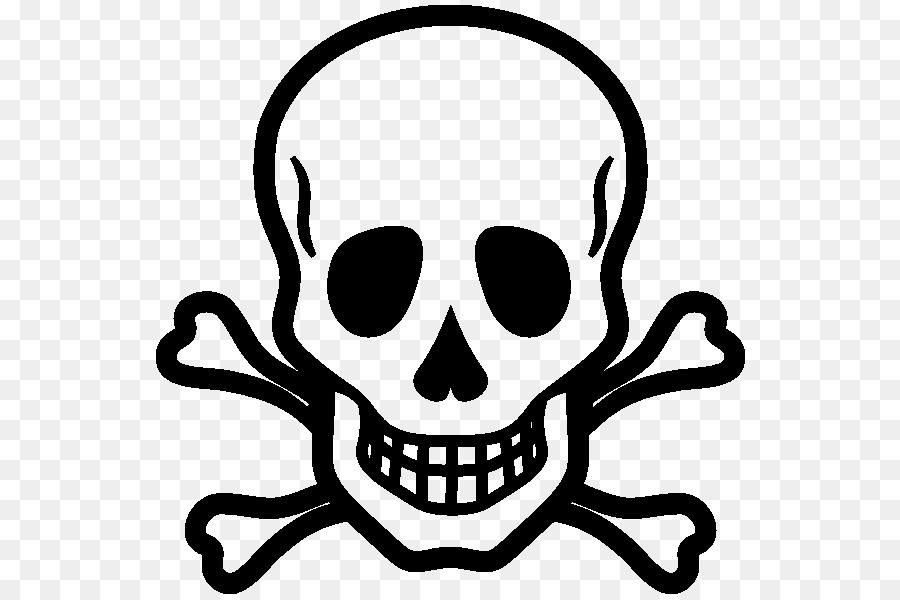 Skull And Crossbones Drawing Skull And Bones Tete De Mort Png