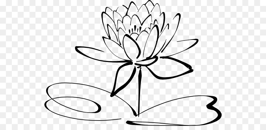 Drawing Line Art Black And White Clip Art White Lotus Flower Png