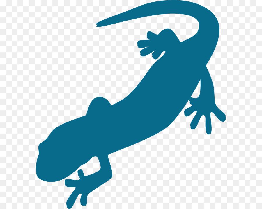 salamander vertebrate newt clip art salamander png download 653 rh kisspng com new clipart new clip art free