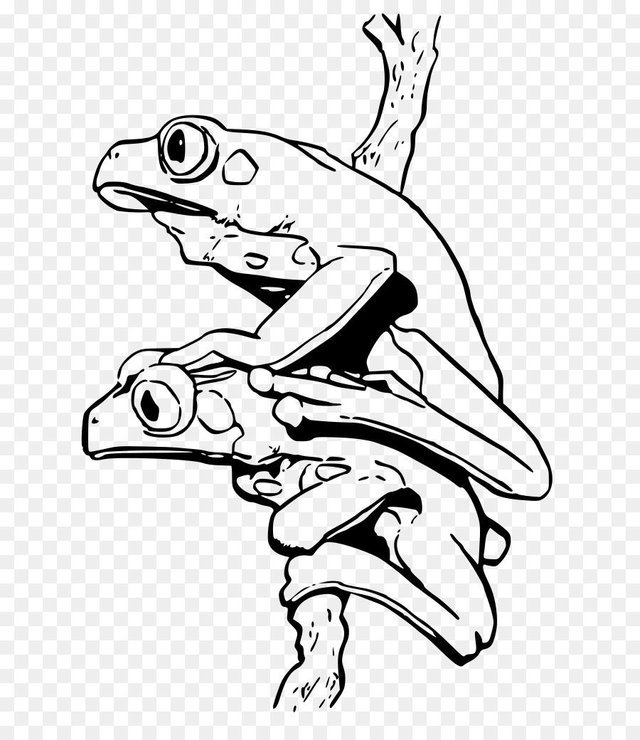 Blue poison dart frog libro para Colorear de Fresa veneno de dardo ...