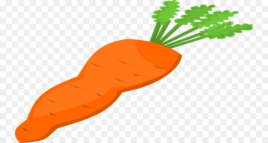 carrot download vegetable clip art cheese ball png download 800 rh kisspng com
