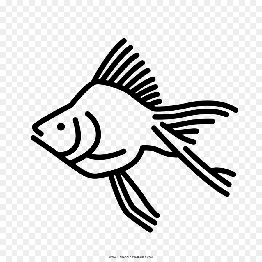 Goldfish Coloring Book Drawing Aquarium Fish Png Download 1000