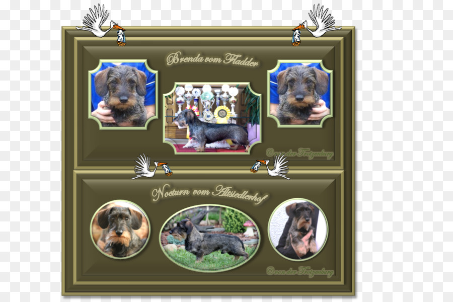 Dog breed Picture Frames Collage - Dog png download - 661*600 - Free ...