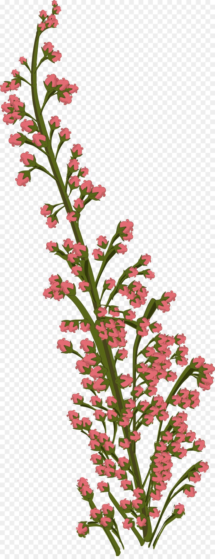 Dibujo De Flores Tropicales De Flores De Corte Flor Png Dibujo