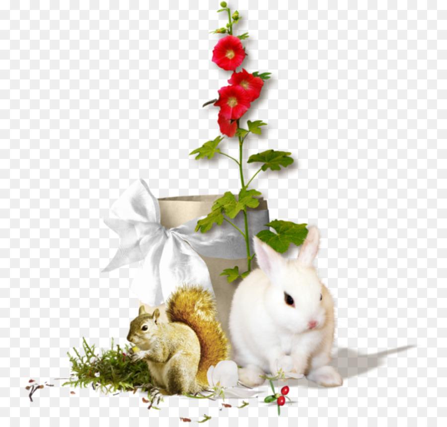 8643039ab7b0 Domestic rabbit PhotoScape - fortnite letter g png download - 800 ...