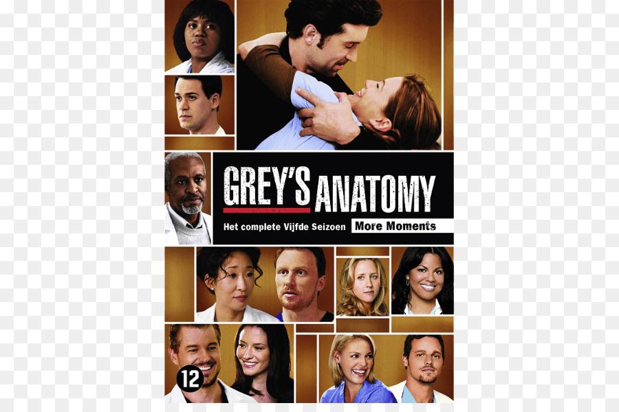 Anatomía de Grey - Temporada 5, en el programa de Televisión ...