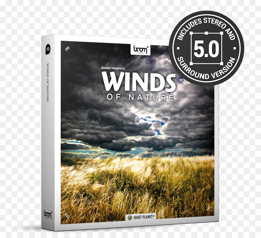 Background Effect png download - 1000*900 - Free Transparent Sound