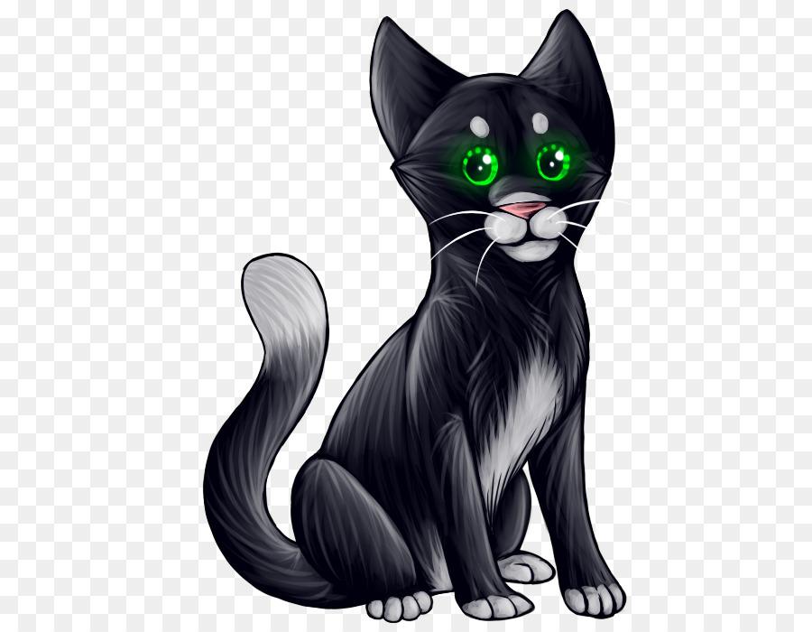Los bigotes de Korat Doméstico de pelo corto gato gato Atigrado gato ...