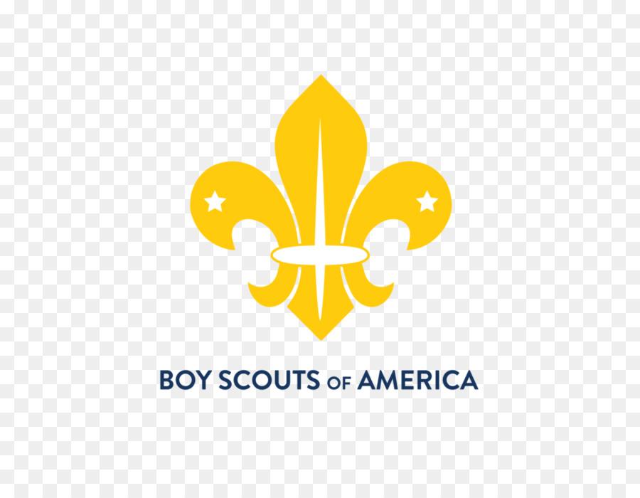 Scouting For Boys Fleur De Lis World Scout Emblem World Organization