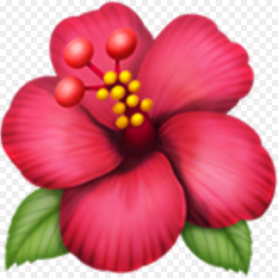 Emojipedia Flower Rosemallows Iphone Emoji Png Download 1024