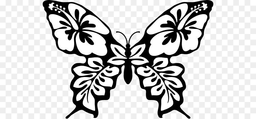 Full Color Decorative Butterfly Illustrations Line Art Clip Art
