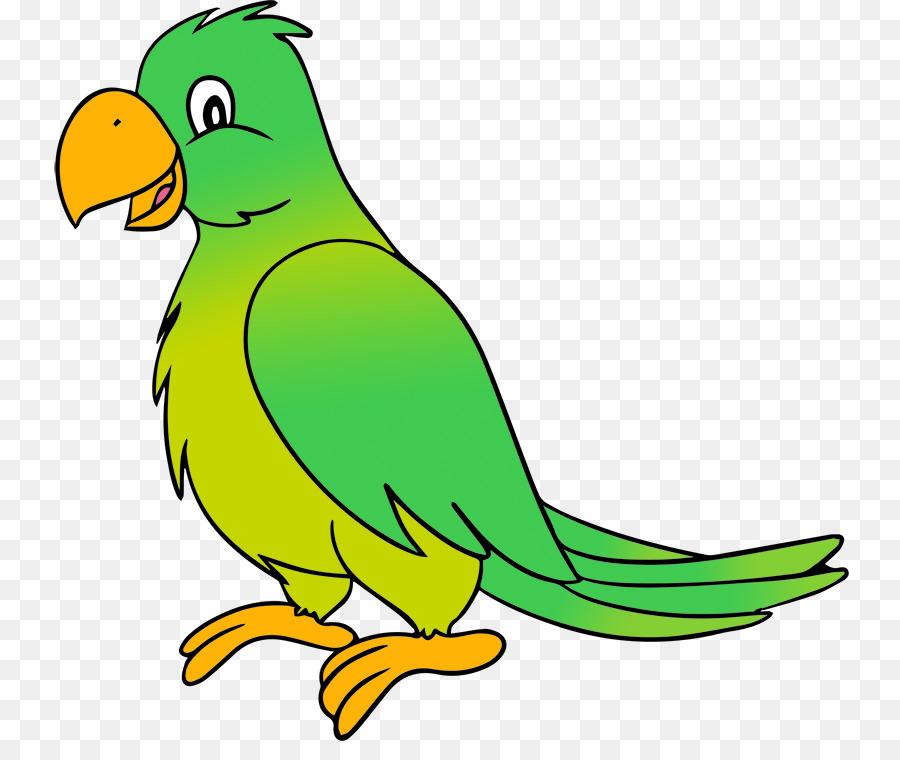 parrots of new guinea budgerigar clip art bird parrot macaw clip art free macaw head clipart
