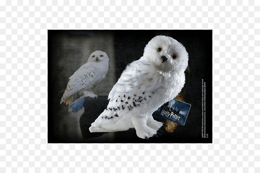 Hedwig Rubeus Hagrid Crookshanks Fictional Universe Of Harry Potter Hermione Granger