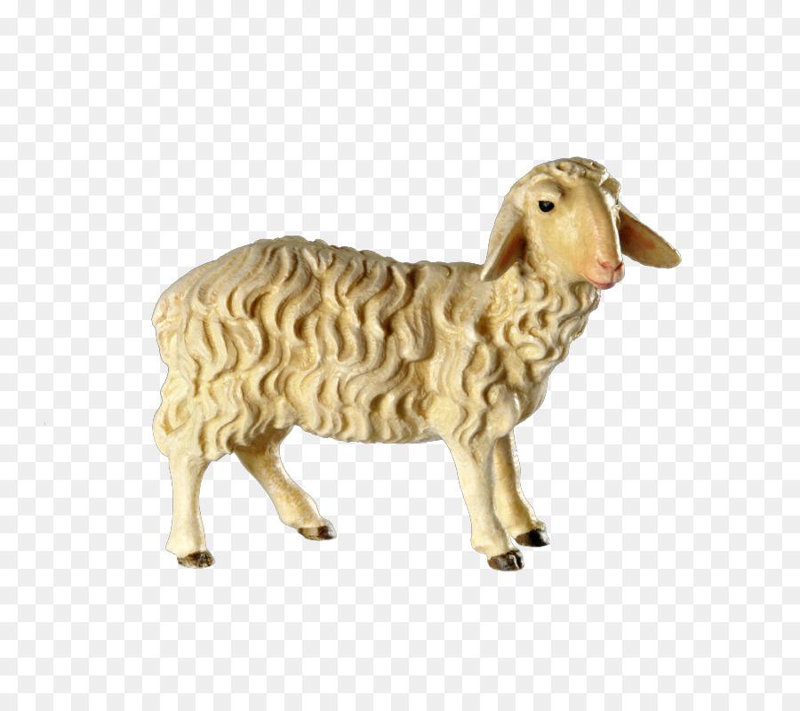 Sheep Argali Bethlehem Ziegen-Weihnachten - Schafe png herunterladen ...