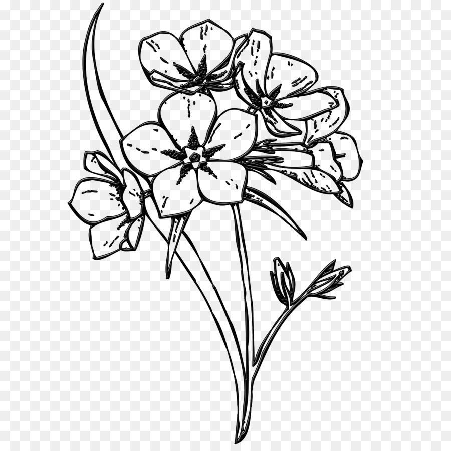 Floral Design Flower Image Drawing Clip Art Flower Png Download