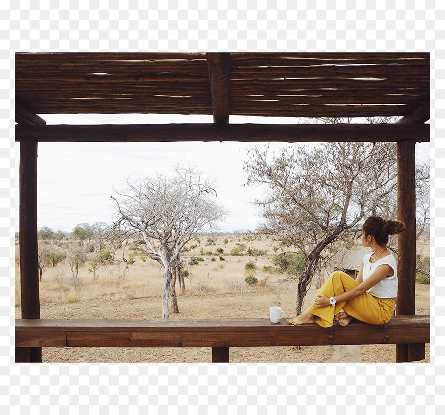 Window Picture Frames Garden furniture Rectangle - african Models ...