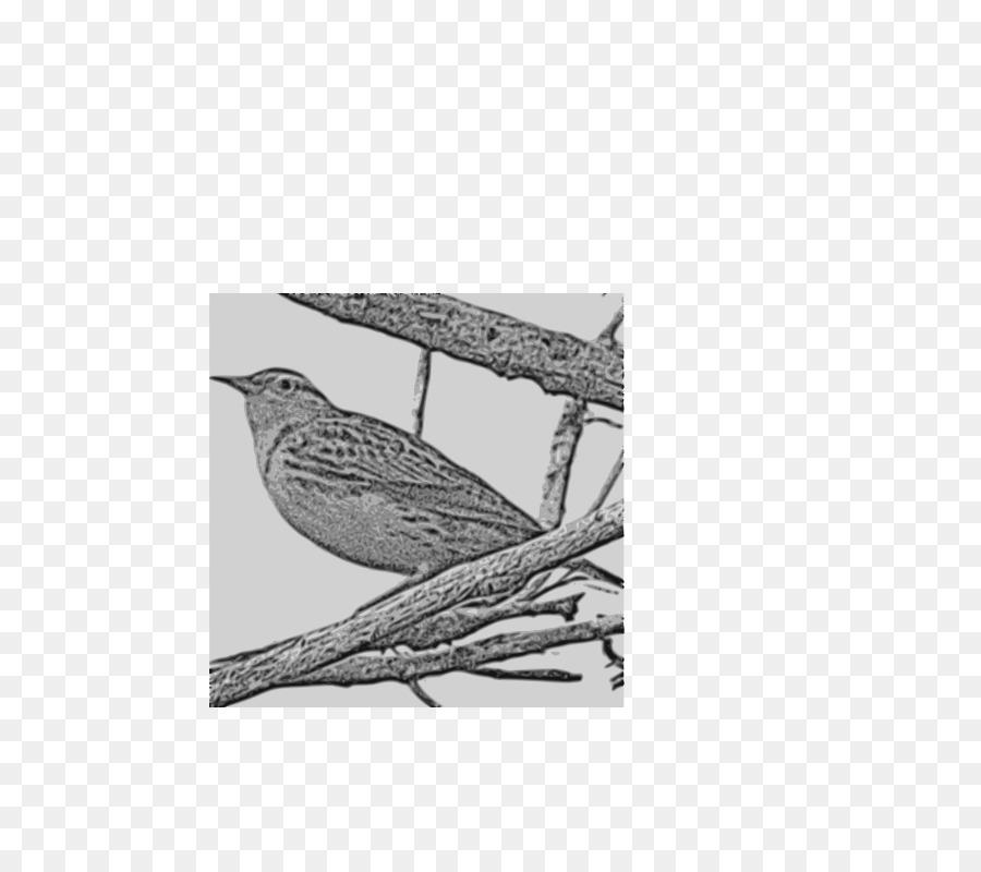 Twig Background Png Download 566800 Free Transparent