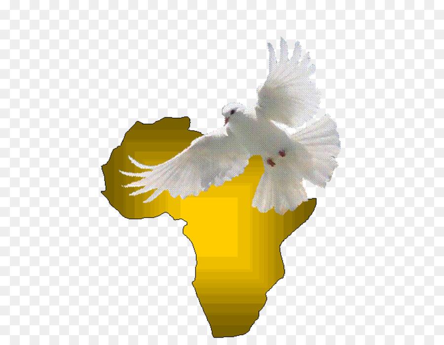 Eagle Holy Spirit Beak Doves As Symbols Feather Eagle Png Download