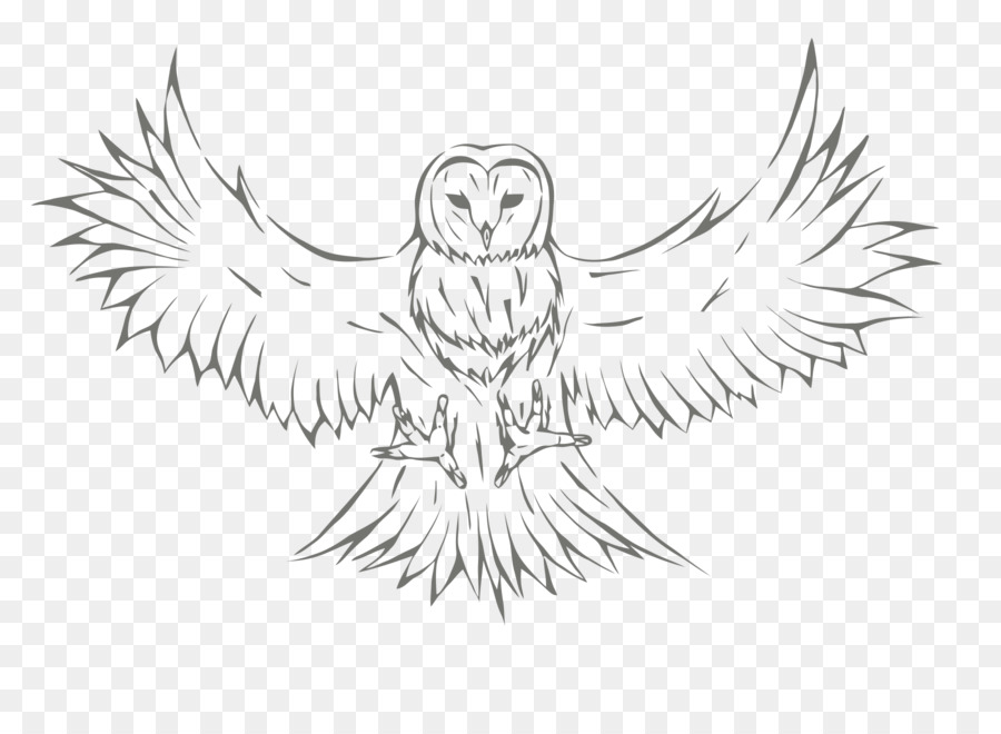 Owl Sketch Drawing Image Graphics Owl Png Download 18001310