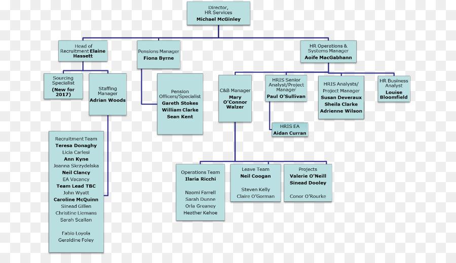 Organizational chart Human resource management system Business ...