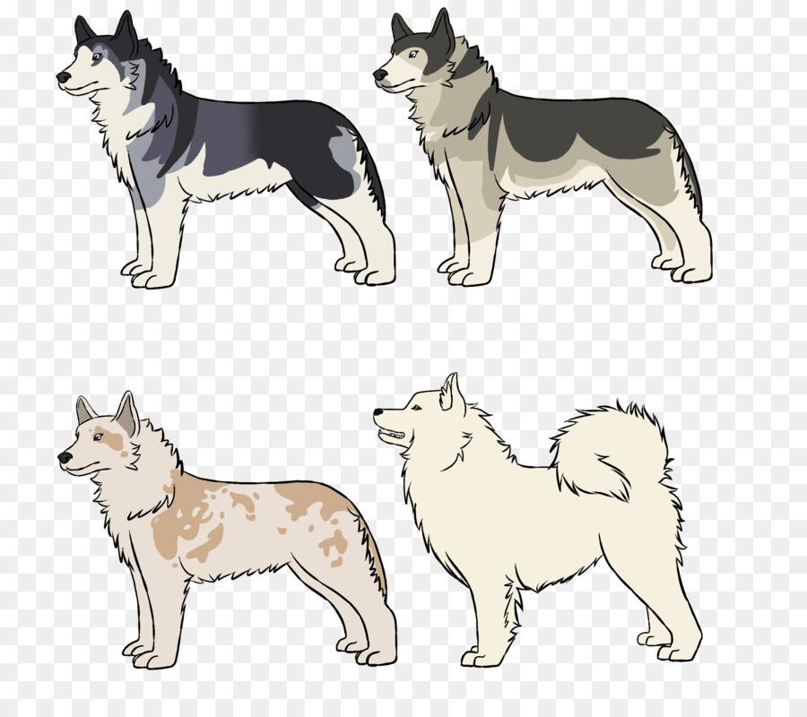 Husky siberiano Saarloos lobo de Siberia Oriental Laika, Malamute de ...