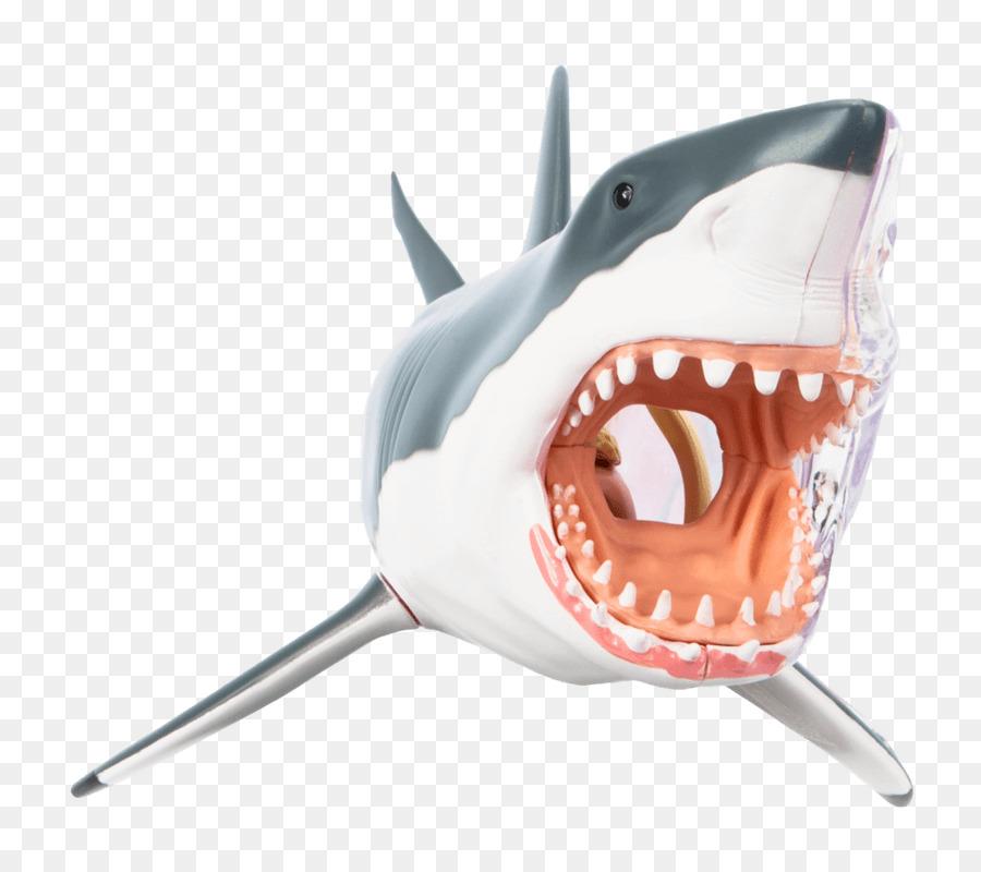 Gran tiburón blanco Cebado peces Cartilaginosos de la Caballa de los ...