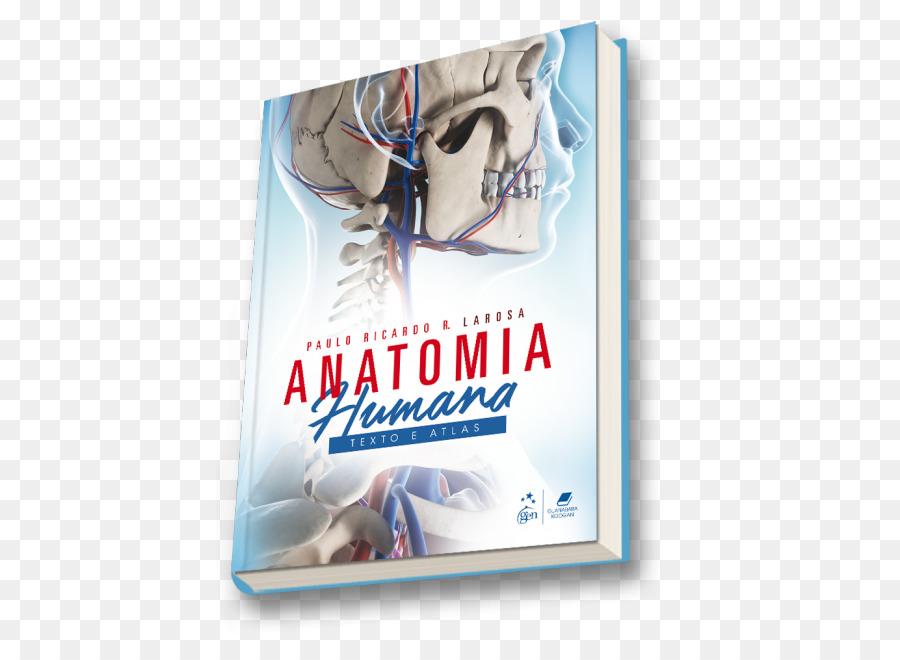 Anatomia Humana - Texto E Atlas PRINCIPIOS DE ANATOMIA HUMANA: ATLAS ...