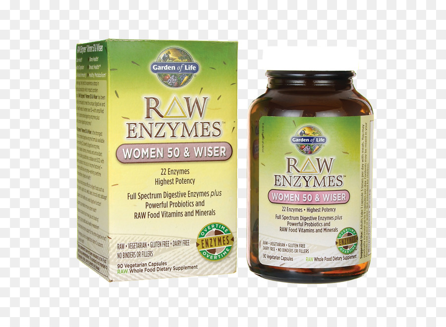 Charming Dietary Supplement Garden Of Life RAW Enzymes Women Food Digestive Enzyme    Womens Health