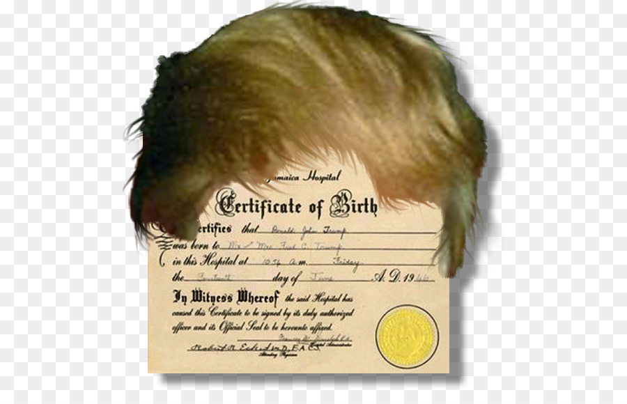 President Of The United States Birth Certificate Template Rsum