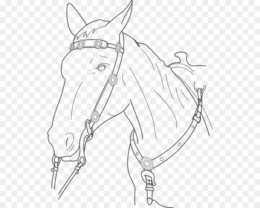 Caballo Semental de Dibujo Clip art libro para Colorear - caballo ...