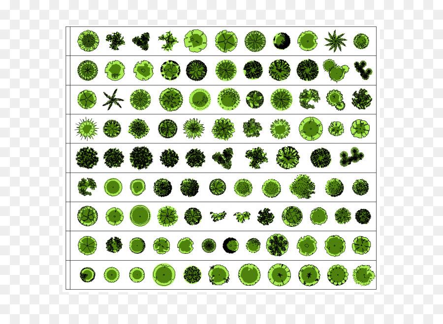 Landscape Architecture Landscape Design Architectural Plan