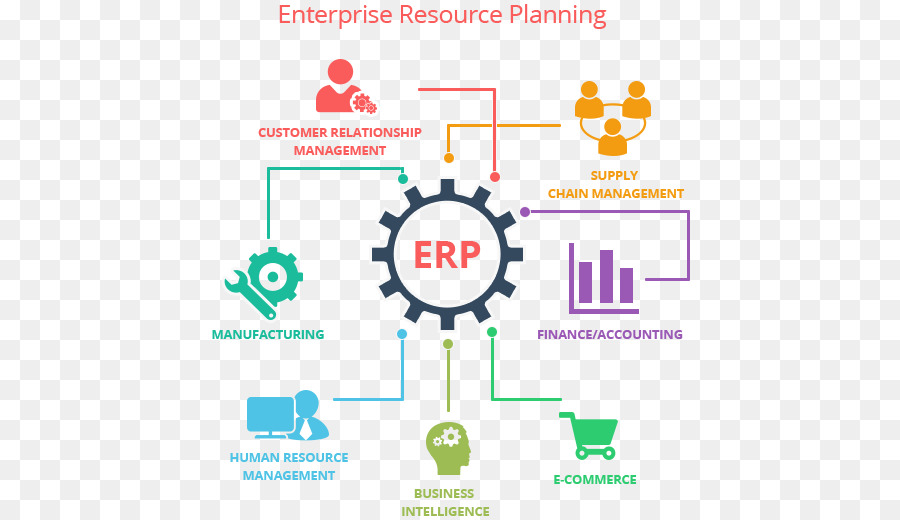 Master thesis erp