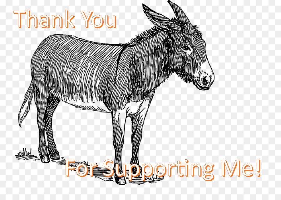 Donkey Mule Drawing Sketch Line Art Donkey Png Download 825623