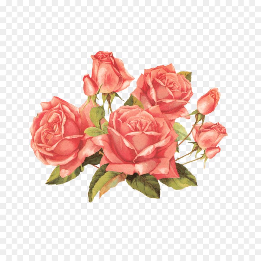 Rose Clip Art Vintage Clothing Flower Antique Rose Png Download