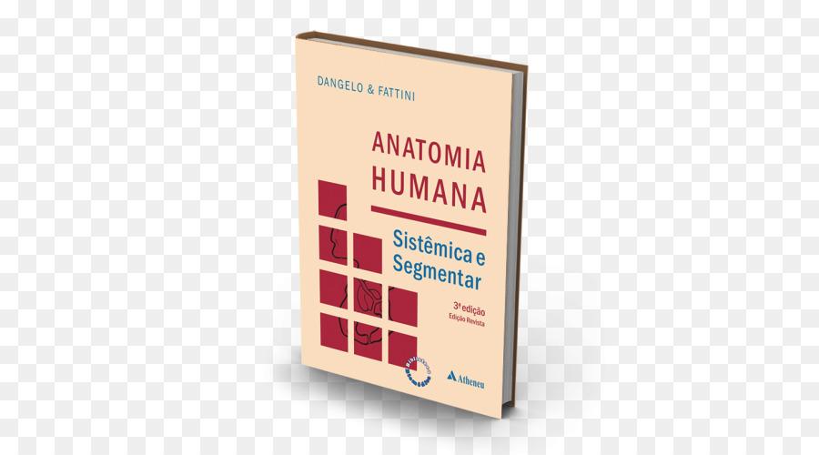 Anatomía humana sistémica y segmentar: para el estudiante de ...