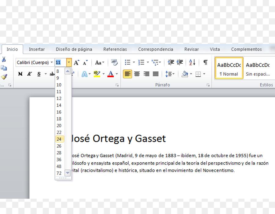Microsoft Word Template Rsum Document Chart Shading Decoration
