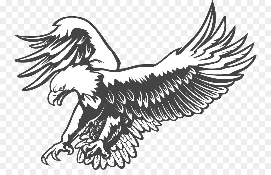 Bald Eagle Black And White Hawk Clip Art Cliparts