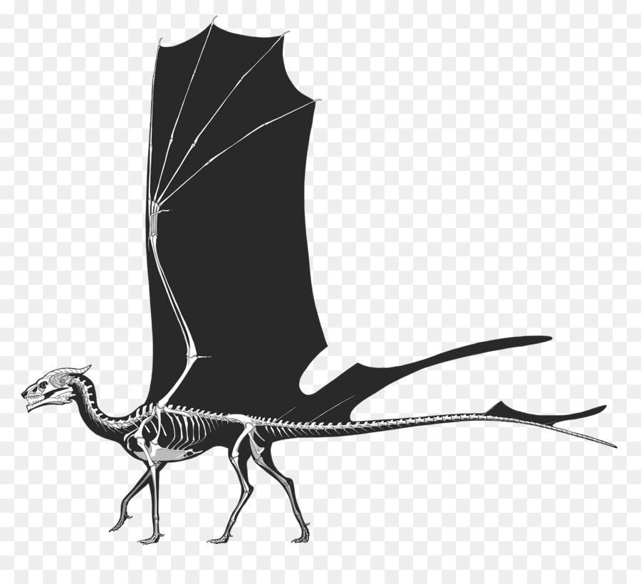 Dragón de la Anatomía del esqueleto Humano de Arte - dragón Formatos ...