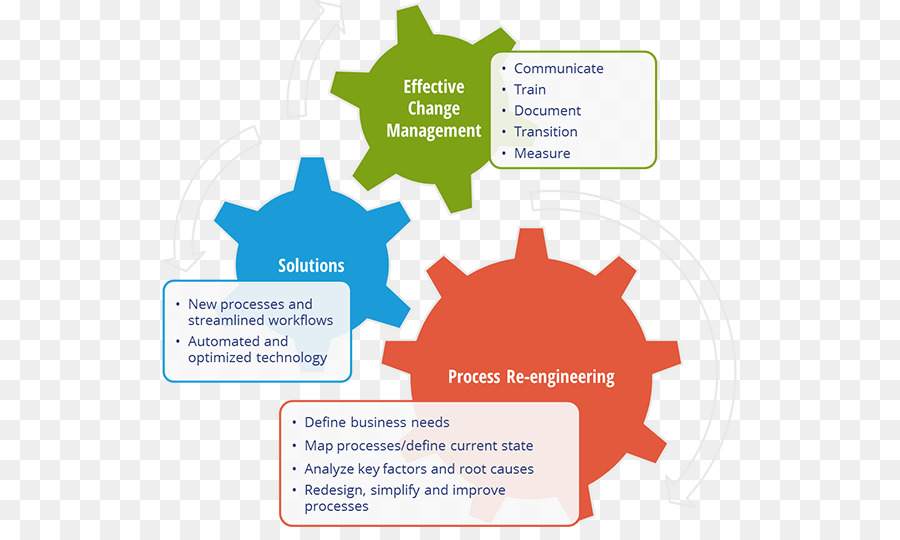 audit business process organization company management cross