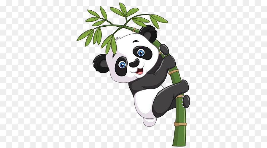 Giant Panda Vektor Grafik Bambus Illustration Clipart Riesen Panda
