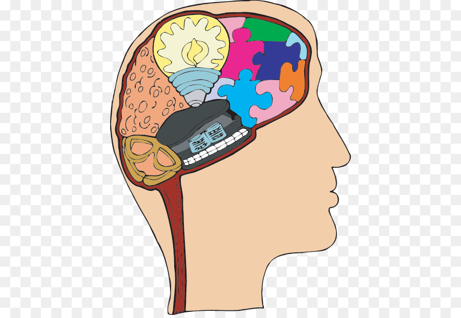 Central nervous system Brain Human body Game - Brain png download ...