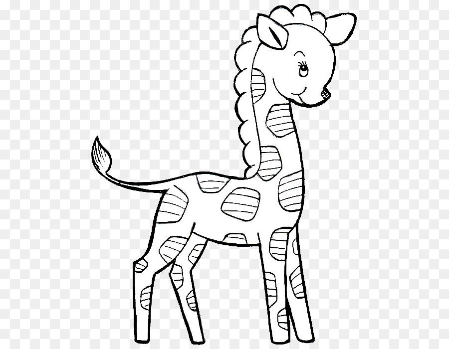 Resim çizim Kitabı Kuzey Zürafa çocuk Boyama çocuk Png Indir 555